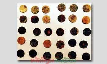 ফুলপুরে মাটি নিচ থেকে প্রাচীন মুদ্রা উদ্ধার