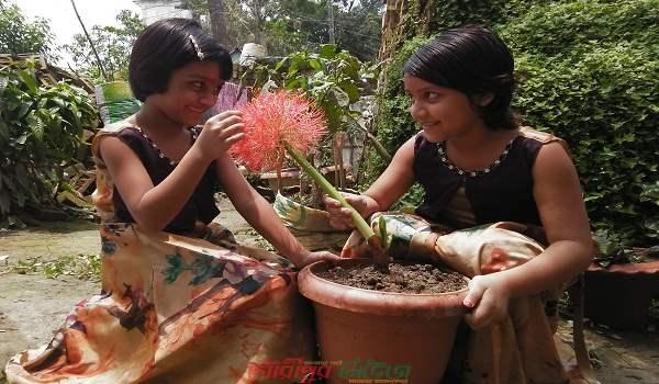 প্রকৃতিতে সৌন্দর্য জানান দিচ্ছে 'মে ফ্লাওয়ার'