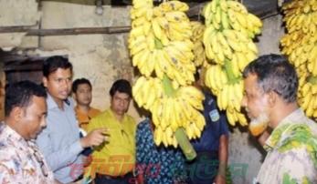 ময়মনসিংহে কলায় কেমিক্যাল  মেশানোর দায়ে বিক্রেতাকে জরিমানা