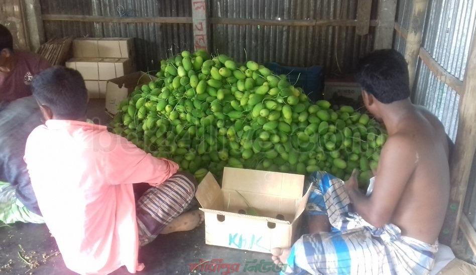 শেরপুরের সবজি যাচ্ছে কুয়েতে