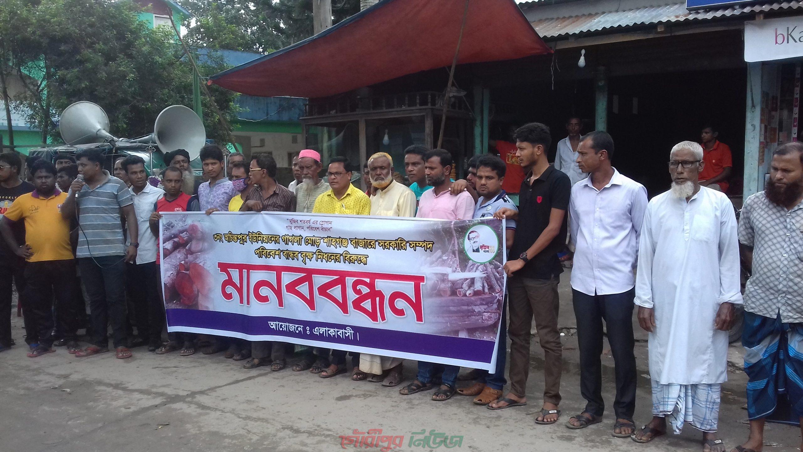 গৌরীপুরে কতিপয় আ'লীগ নেতার বিরুদ্ধে সরকারি গাছ বিক্রির অভিযোগ