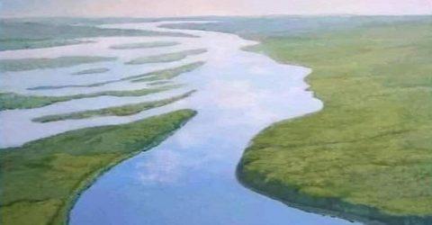 বিশ্ব নদী দিবস: প্রাসঙ্গিক ভাবনা